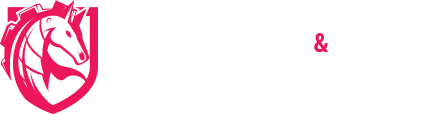 Cheval Musique Tradition